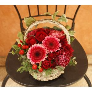 12月のアレンジメント:ガーベラ(銀座花門) 花 ギフト 誕生日 プレゼント フラワー ギフト お祝い 記念日 結婚祝い 開店 オープン あすつく|kamon-hanay