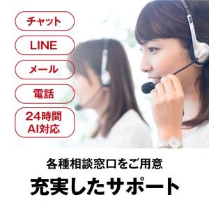 BUFFALO WiFi 無線LAN ルーター WXR-2533DHP2 11ac ac2600 1733+800Mbps デュアルバンド kamoshika