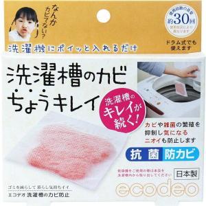 洗濯槽クリーナー 洗濯機 洗濯層のカビ除去 ちょうキレイ 1枚入 抗菌 防カビ剤 約30回分|kanaemina