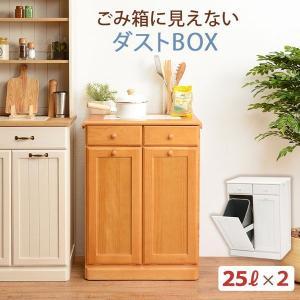 分別ペールカウンター 2分別ダストボックス 25リットル キッチン用ゴミ箱 幅59cm 高さ81cm|kanaemina