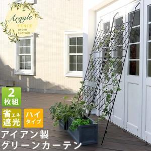グリーンカーテン アイアン製 グリーンラティス 2枚組 アーガイル フェンス  緑のカーテン kanaemina