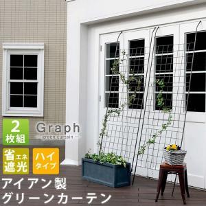 グリーンカーテン アイアン製 グリーンラティス 2枚組 グラフ フェンス  緑のカーテン kanaemina