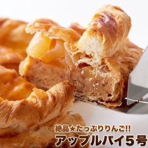 アップルパイ 5号 フルーツ ケーキ タルト りんご フルーツパイ 冷凍|kanaemina