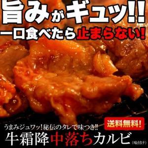 中落ちカルビ 牛肉/霜降り 焼肉用 500g 秘伝のタレで味付き|kanaemina