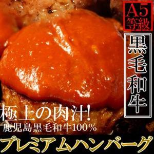 鹿児島県産 黒牛100% ハンバーグ 130g×5個 極上の肉汁|kanaemina