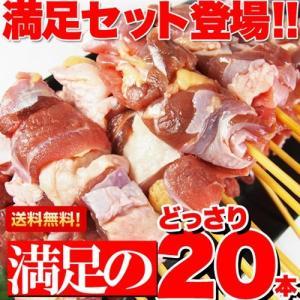 焼き鳥 国産 地鶏 純鶏串 20本 福井県産|kanaemina