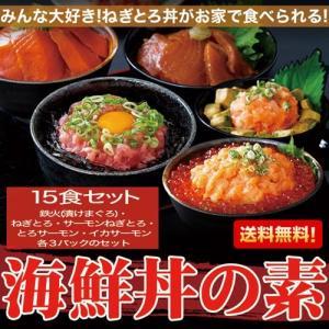 海鮮丼 詰め合わせ どっさり色々詰合せ 15食|kanaemina