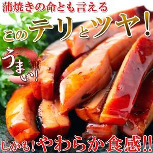 業務用 肉厚 イカのやわらか蒲焼き 1kg かば焼き 烏賊 イカ いか焼き 冷凍|kanaemina