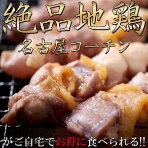 純鶏 名古屋コーチン 串10本入り 焼鳥 焼き鳥 冷凍 おつまみ 親鶏 地鶏 鶏肉 鳥肉|kanaemina