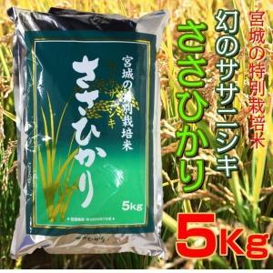 お米 5kg 30年産 宮城県産 特別栽培米 ささひかり 幻のササニシキ 精米 白米|kanaemina