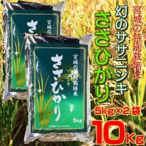 お米 5kg×2袋 10kg 宮城県産 特別栽培米 ささひかり 幻のササニシキ 精米 白米|kanaemina