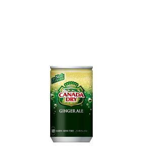 カナダドライ ジンジャーエール 160ml缶 炭酸飲料 1ケース 30本入 kanaemina