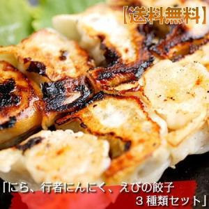 餃子 20個セット 北海道 北の匠|kanaemina