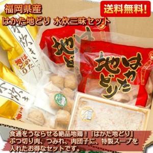 博多地鶏 水炊きセット 福岡県産 はかた地どり 2〜3人前|kanaemina