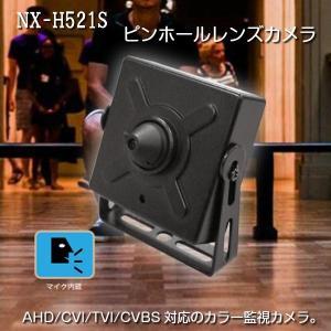 防犯カメラ 監視カメラ 超小型 ピンホールレンズ 207万画素 音声録音対応 屋内用 室内 防水防塵|kanaemina