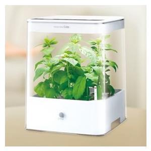 水耕栽培キット 室内 ホワイト