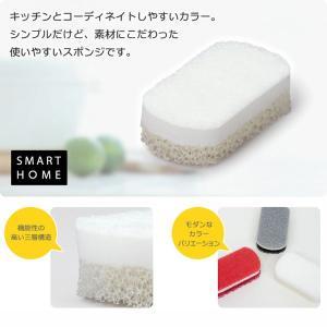 食器洗いスポンジ キッチンスポンジ 3層構造 お洒落 上質スポンジトリプルスポンジ 黒 ブラック|kanaemina