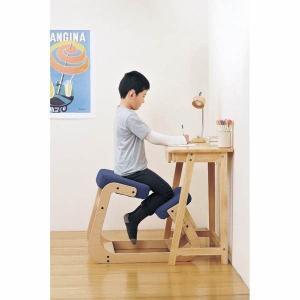 スレッドチェア 学習椅子 背筋が伸びる 姿勢矯正イス キッズチェアー 子供用 大人用 ブルー kanaemina