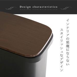 ダストボックス ペダル式ゴミ箱 分別ごみ箱 日本製 30L 30リットル スムースキャスター付き|kanaemina