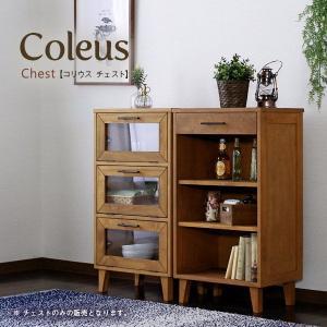 チェスト 木製リビングラック 本棚 書棚 カップボード レトロ調 可動棚 幅50cm|kanaemina