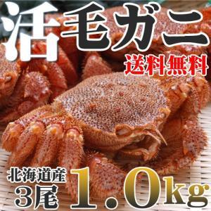 カニ かに 毛ガニ 活 未冷凍 3尾1.0kg 北海道産 送...
