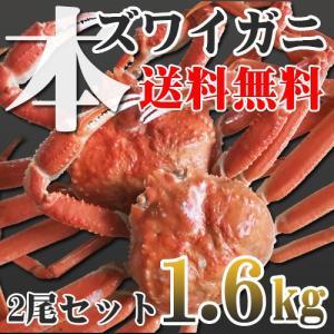 カニ かに 蟹 ズワイ 本ズワイガニ 2尾 1.6kg 超特大 ボイル冷凍 即納 送料無料 北海道特...