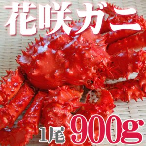 カニ かに 花咲ガニ オス 900g 活目1.1kg ボイル...