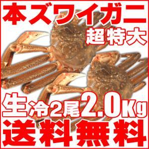 カニ かに ズワイ 2尾2.0kg 超特大 生冷 本ズワイガ...