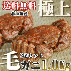 カニ かに 毛ガニ 2尾 1.0kg 極上 毛ガニ 北海道産...