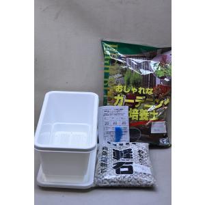 ミニプランター用簡単栽培セット 鉢皿付き kanaiengei