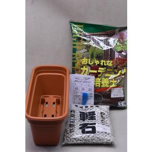 ミニプランター用かんたん栽培セット(茶色) kanaiengei