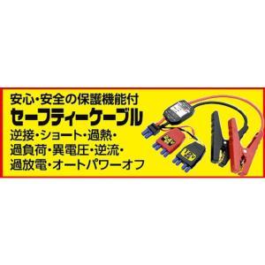 【日動工業】エンジンスターター セーフティーケーブル (ビッグバンメガトン24 AS-1224JS-S ビッグバンF1 用) kanajin