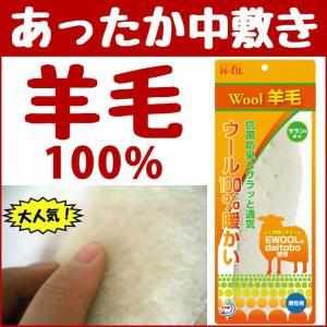 あすつく モリト インソール 羊毛インソール 防寒|kanamono1