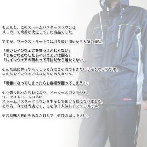 10着セットレインコート レインウェア 弘進ゴ...の詳細画像4