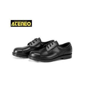 青木産業 安全靴 A1 メンズ レディース 女性対応|kanamono1
