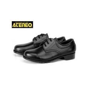 青木産業 安全靴 501 メンズ レディース 女性対応|kanamono1