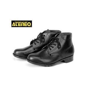 青木産業 安全靴 602 メンズ レディース 女性対応 kanamono1