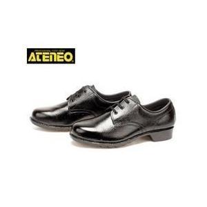 青木産業 安全靴 501OR メンズ レディース 女性対応|kanamono1