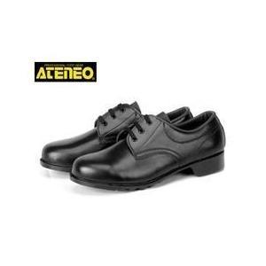 青木産業 作業靴 63W(V63) メンズ レディース 女性対応|kanamono1
