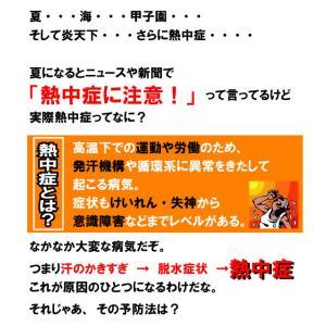 塩飴 業務用 おいしい 熱中症 対策 猛暑de塩飴1kg kanamono1 02