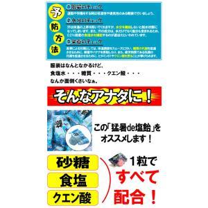 塩飴 業務用 おいしい 熱中症 対策 猛暑de塩飴1kg kanamono1 03