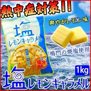 塩キャラメル 業務用 熱中症 対策 塩飴 | 安部製菓 塩レモンキャラメル 1kg|kanamono1