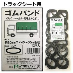 ゴムバンド 20mm巾x40〜60cm折径 12本入り|kanamonoasano