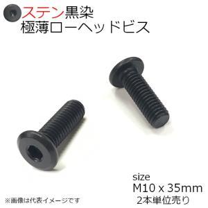SUS 極薄ローヘッドビス 黒 M10x35mm 2本入