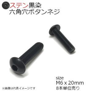 SUS 六角穴付ボタンネジ 黒色 M6x20mm 8本入 全ネジ
