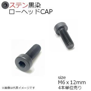 SUS ローヘッドCAP 黒色 M6x12mm 4本入 全ネジ