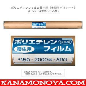 ポリエチレンフィルム養生用(土間用ポリシート)  #150・2000mm×50m  ■特長 ・土間コ...