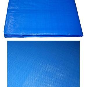 ブルーシート#3000【厚手】(規格サイズ10m×10m)輸入品【2枚セット】防水