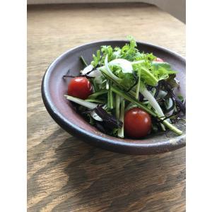 松風作 玉縁浅鉢|kanayamayaki