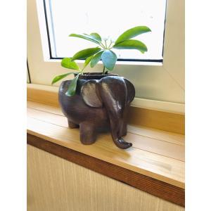 ぞうさん 植木鉢 kanayamayaki